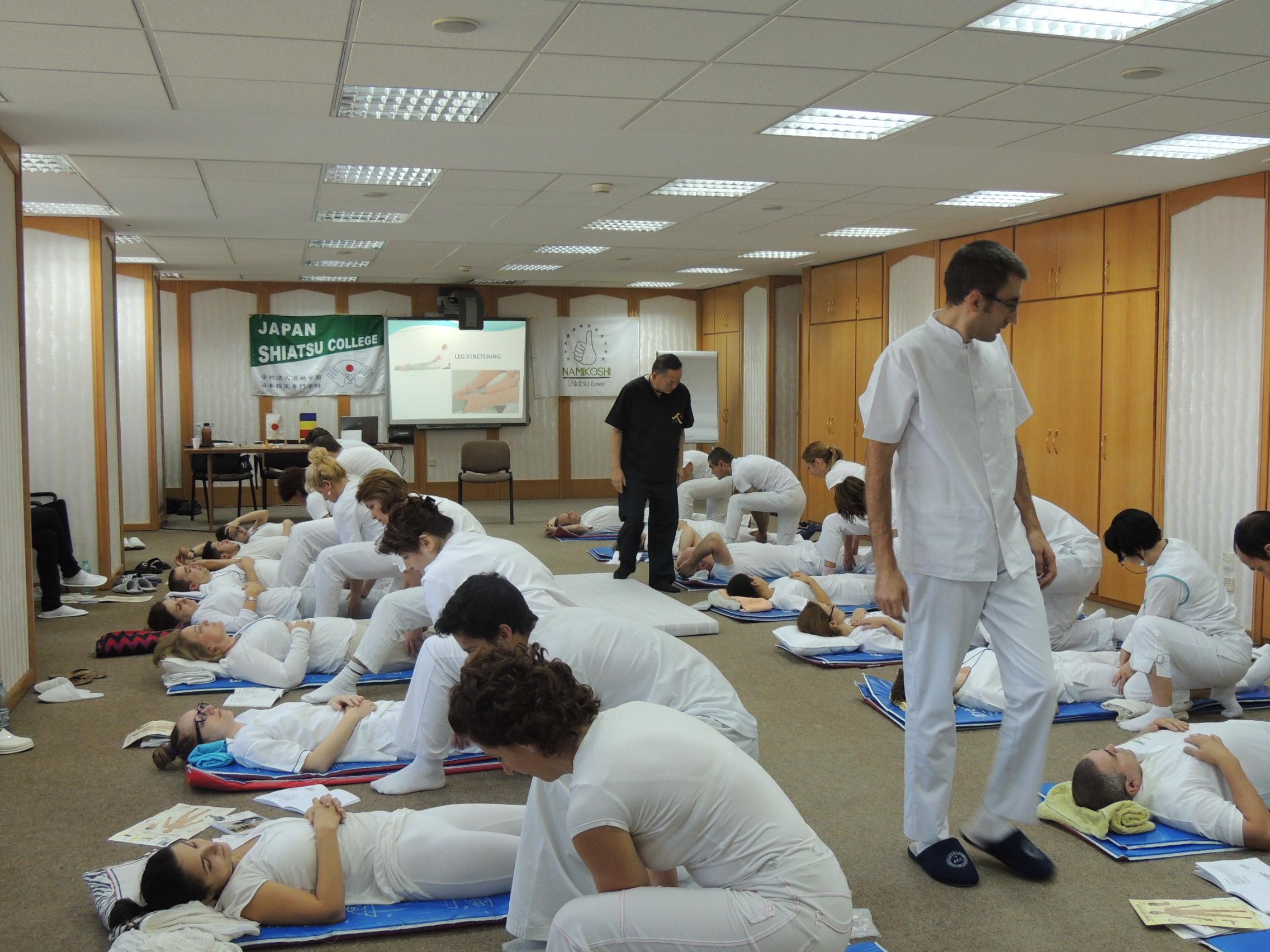 Seminar terapia Shiatsu CCIR Bucuresti 2014
